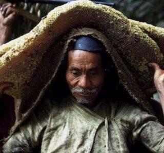 Wild Honey Hunting In Nepal (13 photos)
