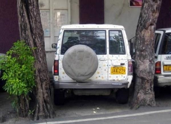 1252 Parking Fails (20 photos)