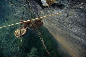 Wild Honey Hunting In Nepal (13 photos) 2
