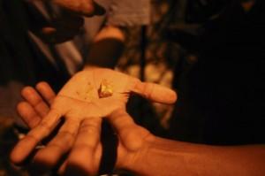 Crack Addicts In Brazil (24 photos) 2