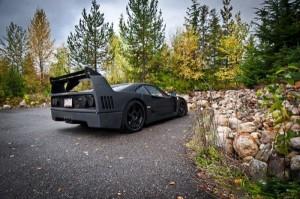Carbon Fiber Wrap Ferrari F40 (10 photos) 7