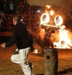 Bizarre Spanish Bull Burning Festival (10 photos) 1