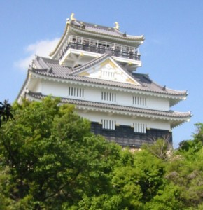 Beautiful Castles Around the World (19 photos) 1