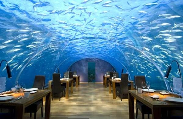1190 Poseidon Undersea Resort (12 photos)