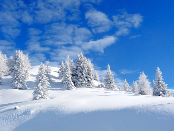 The Beauty of Winter (35 photos) 1