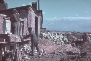 Inside Nazi-Occupied Poland (21 photos) 14