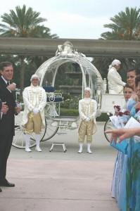 Weird Weddings (32 photos) 21