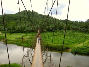 So-called Bridges (40 photos) 21