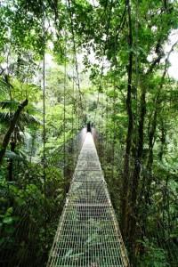 So-called Bridges (40 photos) 23