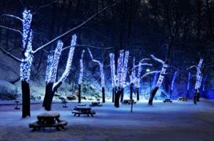 Beautiful Christmas Lights (30 photos) 23