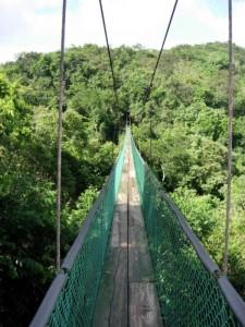 So-called Bridges (40 photos) 24