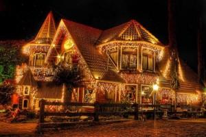 Beautiful Christmas Lights (30 photos) 25