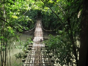 So-called Bridges (40 photos) 25