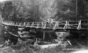 So-called Bridges (40 photos) 32