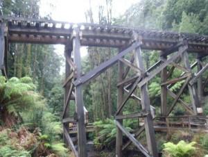 So-called Bridges (40 photos) 35