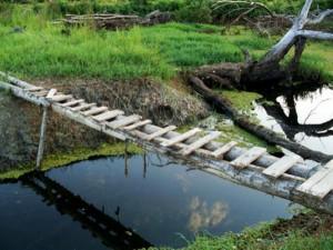 So-called Bridges (40 photos) 39