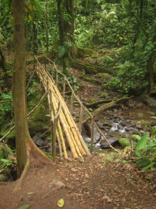 So-called Bridges (40 photos) 40