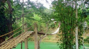 So-called Bridges (40 photos) 5