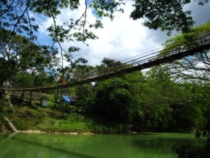 So-called Bridges (40 photos) 6