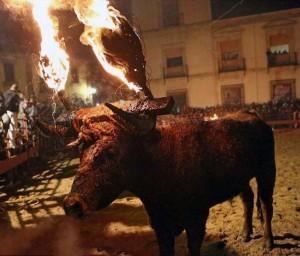 Bizarre Spanish Bull Burning Festival (10 photos) 9