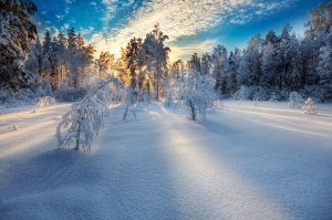 Magnificent Snowy Landscapes (20 photos) 10