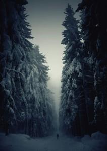 Magnificent Snowy Landscapes (20 photos) 1