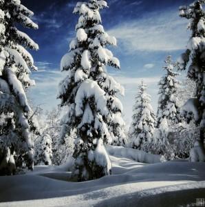Magnificent Snowy Landscapes (20 photos) 12