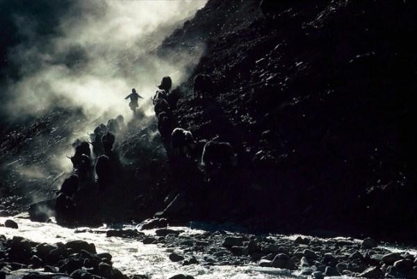 1315 Caravans Of The Himalaya (25 photos)