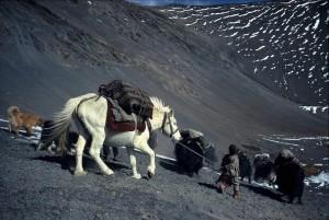 Caravans Of The Himalaya (25 photos) 14
