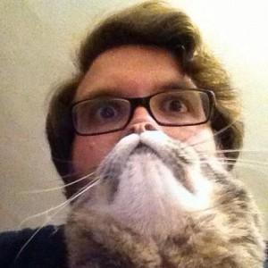 Perfectly Timed Cat Photos (40 photos) 16