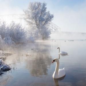 Magnificent Snowy Landscapes (20 photos) 17