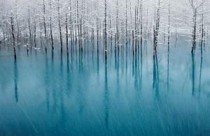 Magnificent Snowy Landscapes (20 photos) 2