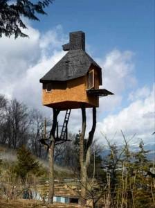 Unusual Houses (40 photos) 28