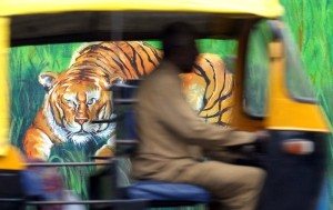 Amazing Street Art in India (28 photos) 3