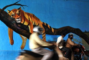 Amazing Street Art in India (28 photos) 4