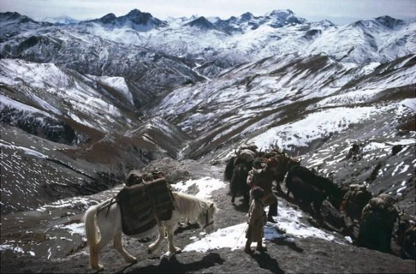 518 Caravans Of The Himalaya (25 photos)