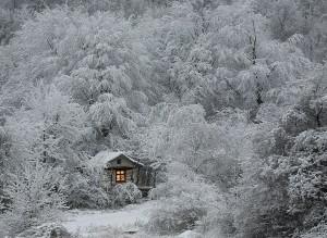 Magnificent Snowy Landscapes (20 photos) 5