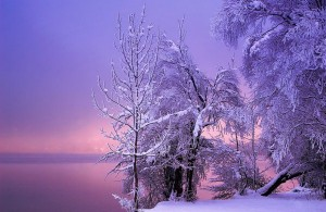 Magnificent Snowy Landscapes (20 photos) 6