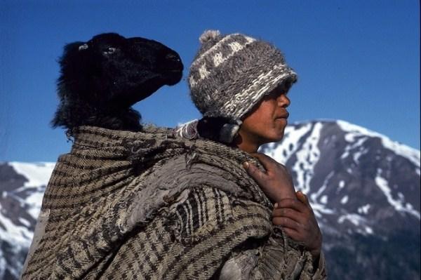 817 Caravans Of The Himalaya (25 photos)