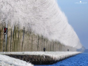 Magnificent Snowy Landscapes (20 photos) 8