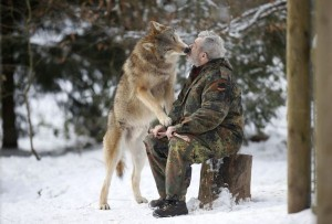 Living With Wolves (30 photos) 1