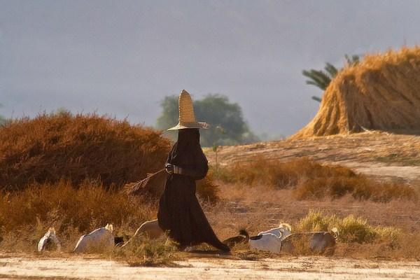 "1214 Witches"" of Yemen (16 photos)"