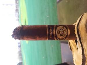 Premium Cigars (31 photos) 12