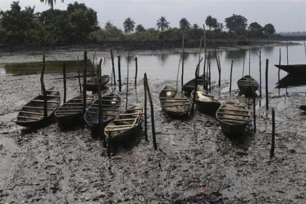 1321 Oil Thieves in Nigeria (30 photos)