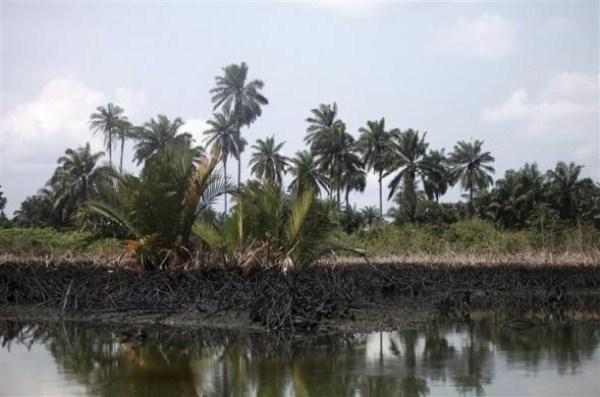 1420 Oil Thieves in Nigeria (30 photos)