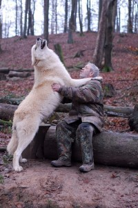 Living With Wolves (30 photos) 14