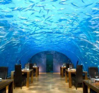 World's Most Beautiful Restaurants (40 photos)