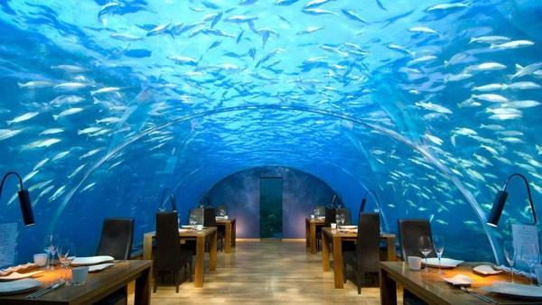 1615 Worlds Most Beautiful Restaurants (40 photos)