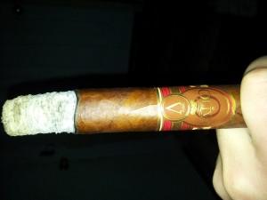 Premium Cigars (31 photos) 17