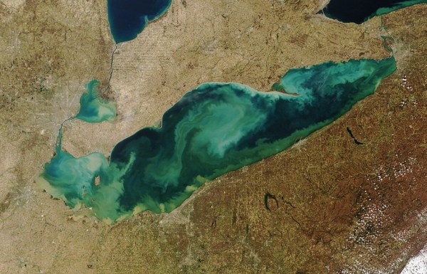 2010 Waters From Space (25 photos)
